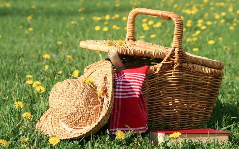 picnic-loti-e1465816434550