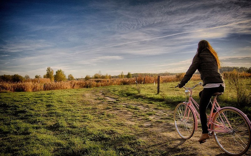 woman-with-a-pink-bicycle-on-the-field-pics-403642